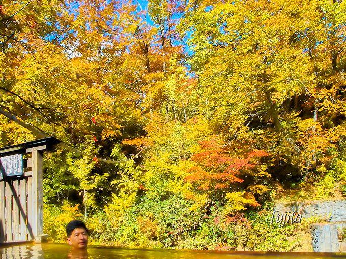 第1位 乳頭温泉郷 妙乃湯温泉の紅葉露天風呂