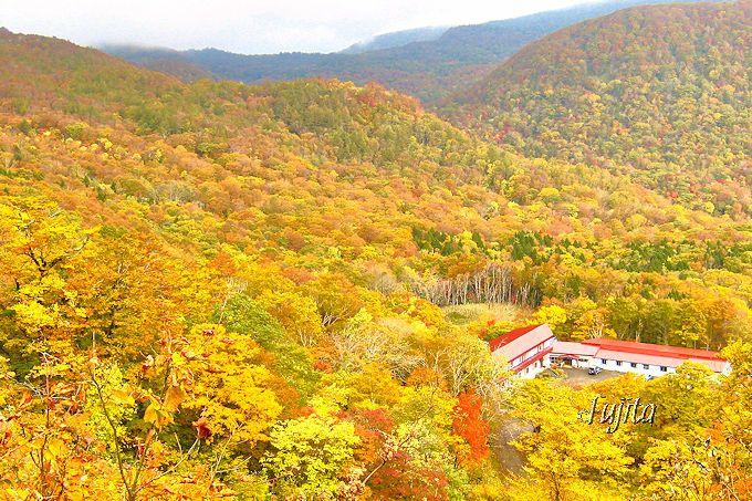 赤湯温泉好山荘は一面の紅葉に包まれる!