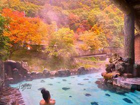 客室や露天風呂から紅葉を一望!花巻温泉郷大沢温泉「菊水館」