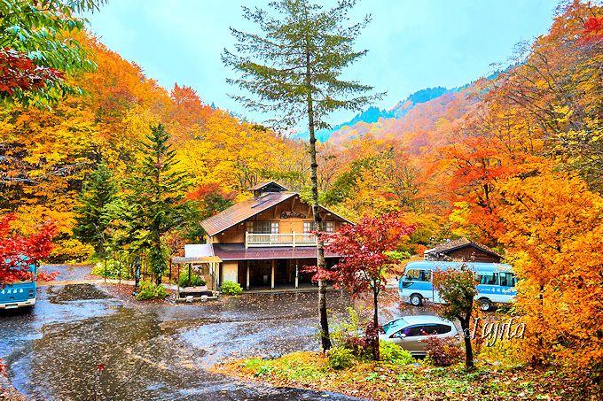 まさに紅葉に包まれた秘湯!青荷温泉玄関前の「健六の湯」