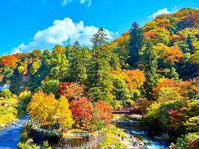 秘湯と紅葉が絶景の名所!青森・青荷温泉と「中野もみじ山」で紅葉狩り