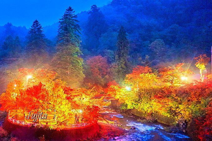 青荷温泉の夕食後に行きたい!「中野もみじ山」の紅葉ライトアップ
