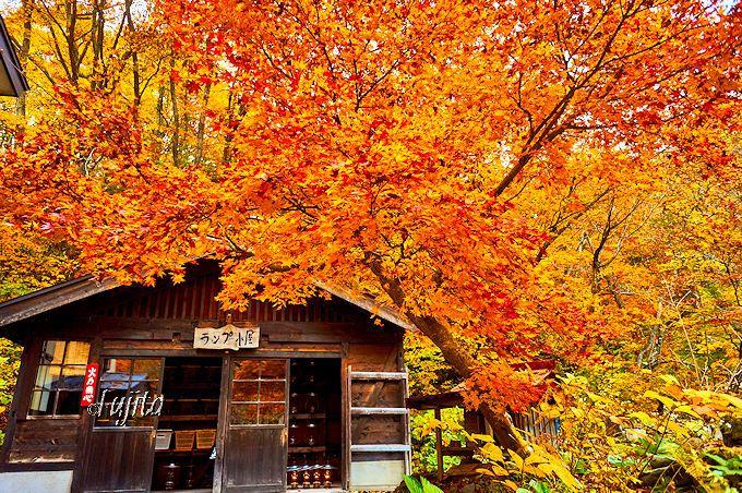 紅葉の中に佇む青荷温泉のランプ小屋