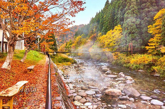 足湯しながら紅葉狩り!秋の宮温泉郷「川原の湯っこ」