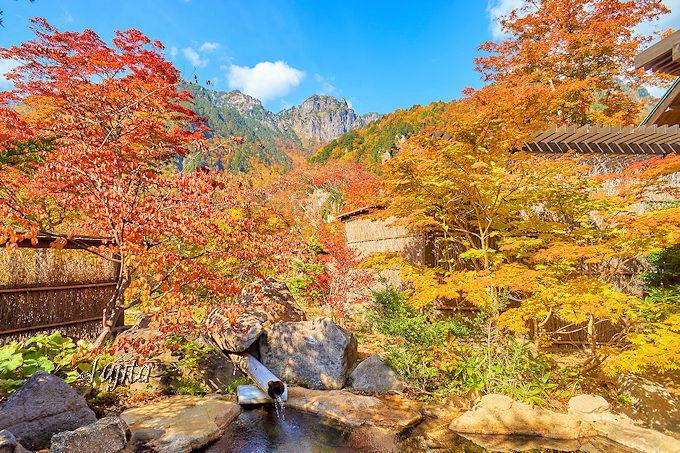 新穂高温泉の露天風呂から紅葉と北アルプスを一望!