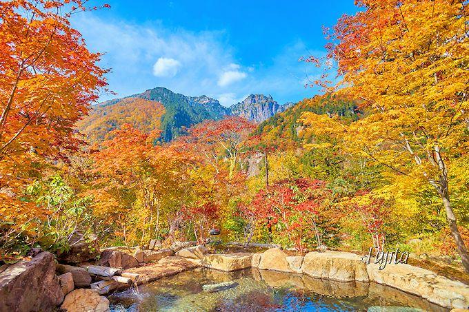 紅葉が一層ワイド!「野の花山荘」女湯露天風呂