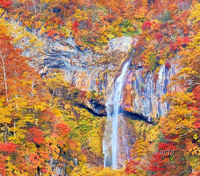 惣滝の紅葉はペンキのように色鮮やか!