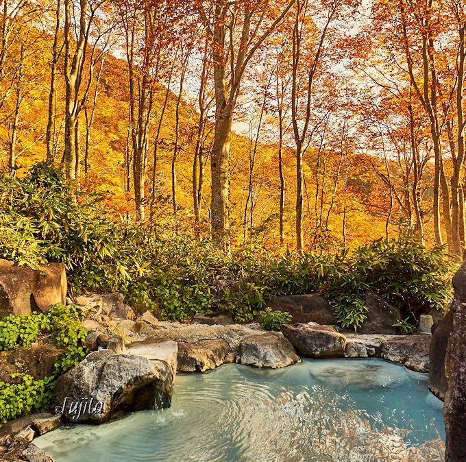 燕温泉「黄金の湯」の紅葉!