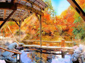 紅葉露天風呂の絶景が凄い!「ゆづくしSalon一の坊」〜仙台市・作並温泉〜