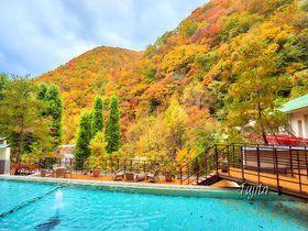 紅葉が見られるおすすめ温泉地10選 癒しの秋、見つけた!