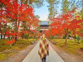「絶景かな」の南禅寺が至近距離!京料理の宿「菊水」は京都の紅葉観光に最適