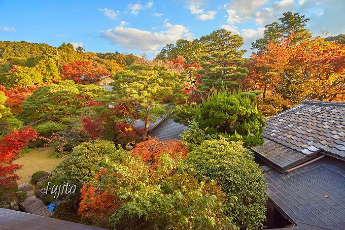 南禅寺界隈別荘の贅沢気分で滞在!料理旅館「菊水」