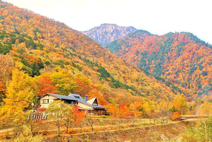 葛温泉は高瀬渓谷の紅葉に包まれる!