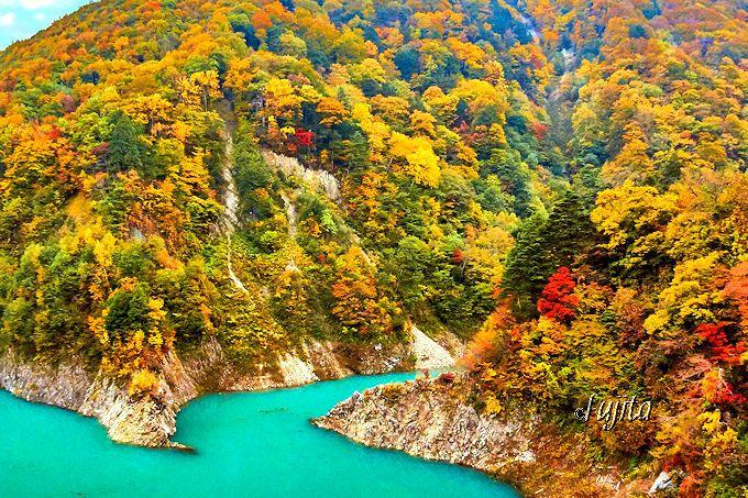 高瀬渓谷の紅葉は龍神湖の水色に映える!
