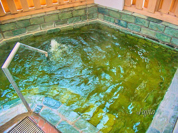 白や緑に変化する硫黄泉が最高!鳴子ホテルは、鳴子温泉屈指の名湯