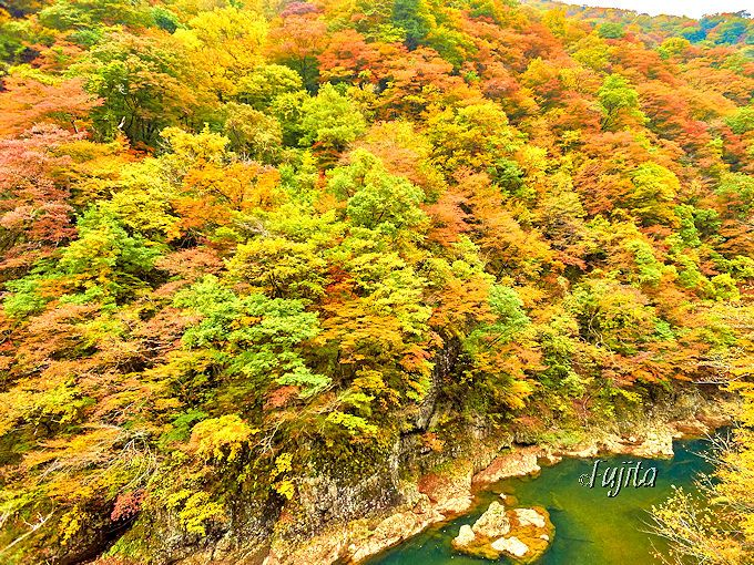 今は抱き合わない?秋田県を代表する紅葉名所「抱返り渓谷」