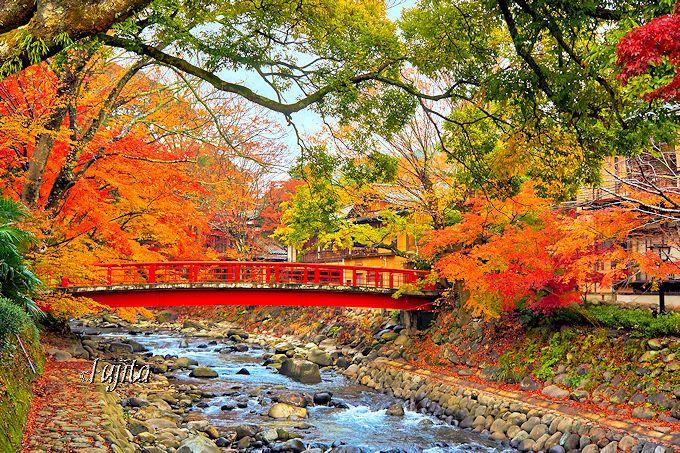 赤い橋によく似合う!修善寺温泉川沿いの紅葉