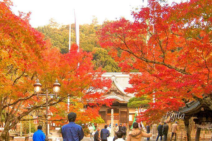 修禅寺境内の紅葉!
