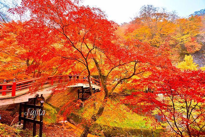 秋の伊香保温泉では必見!紅葉の河鹿橋は大人気