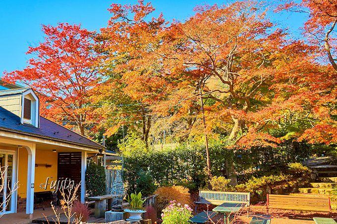 強羅公園で箱根美術館共通券を購入可能