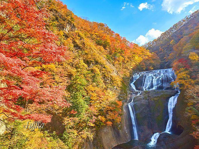 「袋田の滝」の紅葉は、第2観瀑台がおすすめ!