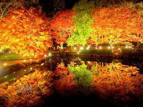 岐阜のおすすめ紅葉スポット8選 大自然による絶景を満喫!