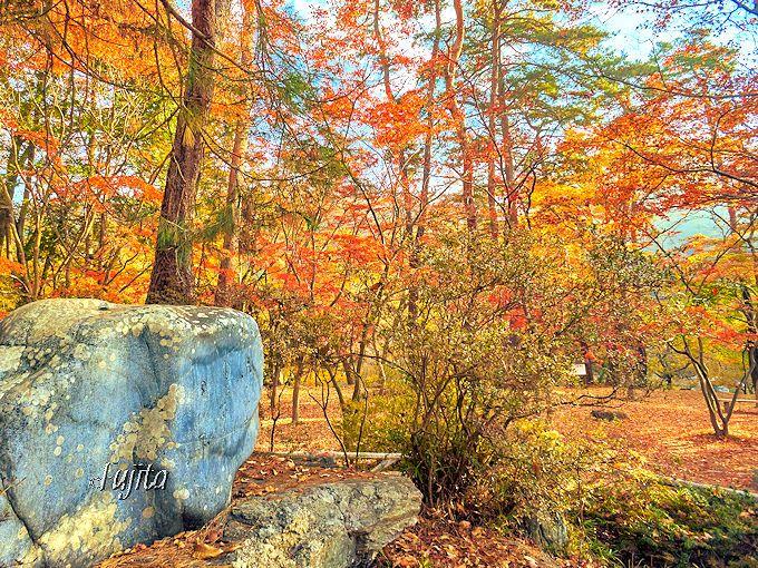 秩父・長瀞の紅葉なら!月の石もみじ公園