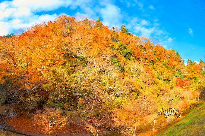 筒森もみじ谷の紅葉は穴場