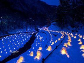 雪と灯りの絶景!冬の日光・湯西川温泉「かまくら祭」の夜景が美しすぎる