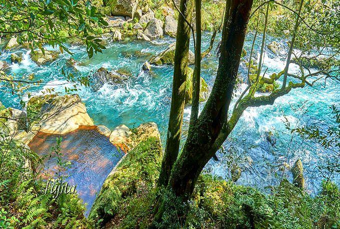 絶景露天風呂「椋の木」