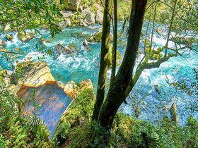 霧島・妙見温泉「妙見石原荘」は絶景露天風呂と日本2位の食事が評判!