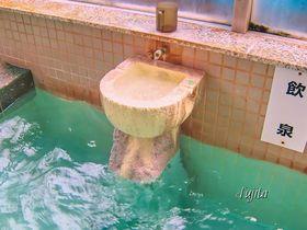 レモン味の温泉?北海道・川湯温泉「お宿 欣喜湯」は酸性泉の飲泉が最高!
