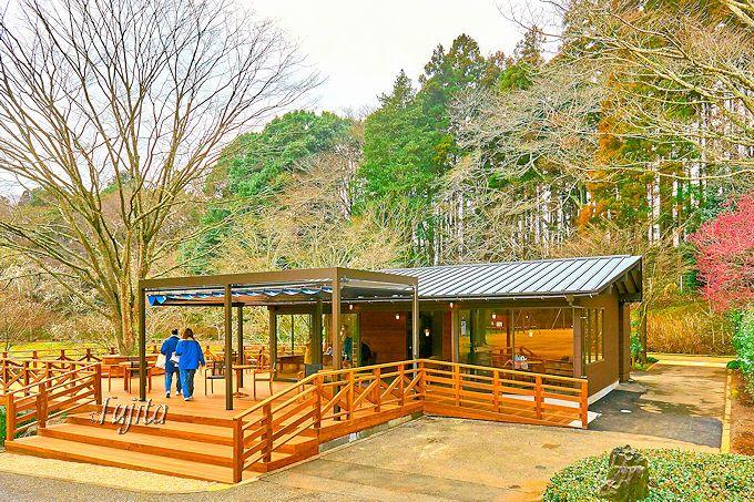 カフェのように素敵な休憩所!DIC川村記念美術館の自然散策路