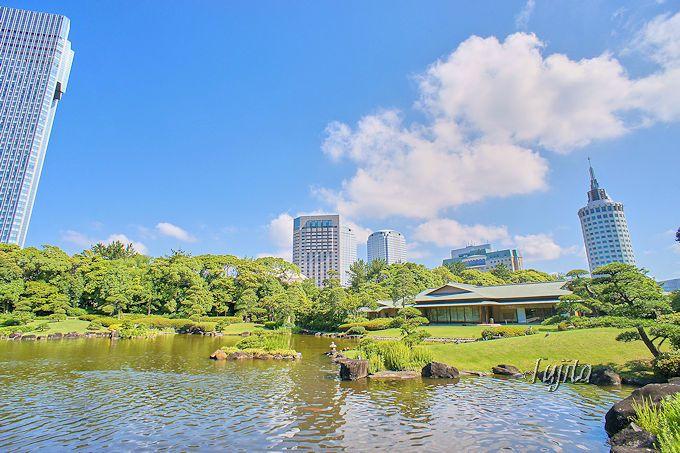 県立幕張海浜公園は日本庭園も駐車場も無料!