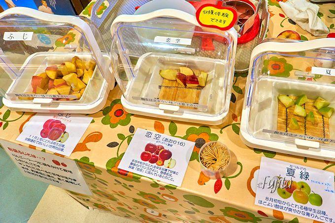 8月1日から11月中旬まで可能!りんご収穫体験