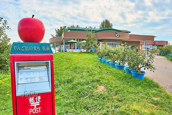 弘前市りんご公園の「りんごもぎとり収穫体験」