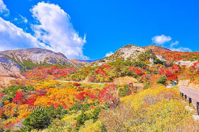 天狗の庭の紅葉は最上部も絶景!