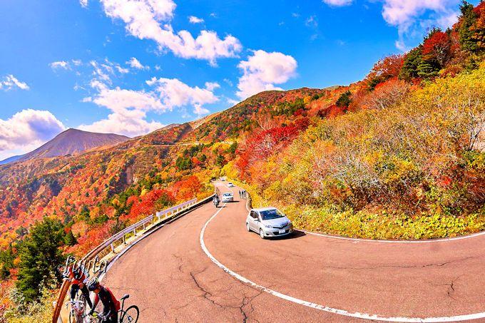 紅葉の絶景に大満足!ドライブ・ツーリング・サイクリングに最適