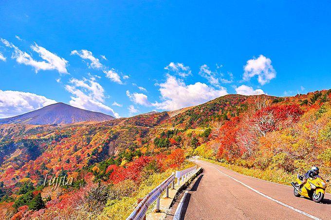 駐車スペースを見つけて「天狗の庭」の紅葉を徒歩で満喫!