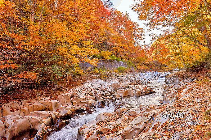 中津川渓谷は河原の紅葉も絶景!