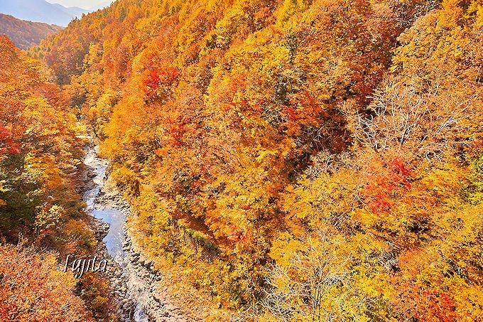 裏磐梯を代表する紅葉名所「中津川渓谷」