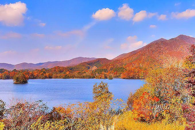 紅葉の小野川湖を至近距離から一望!無名の穴場絶景スポット