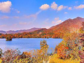 絵画のような湖と渓谷の紅葉!福島・磐梯吾妻レークラインのおすすめ絶景スポット