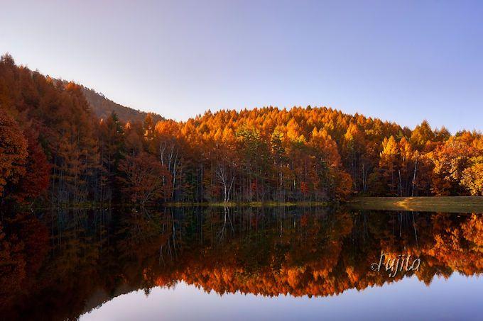 御射鹿池の紅葉が美しい!蓼科の観光名所