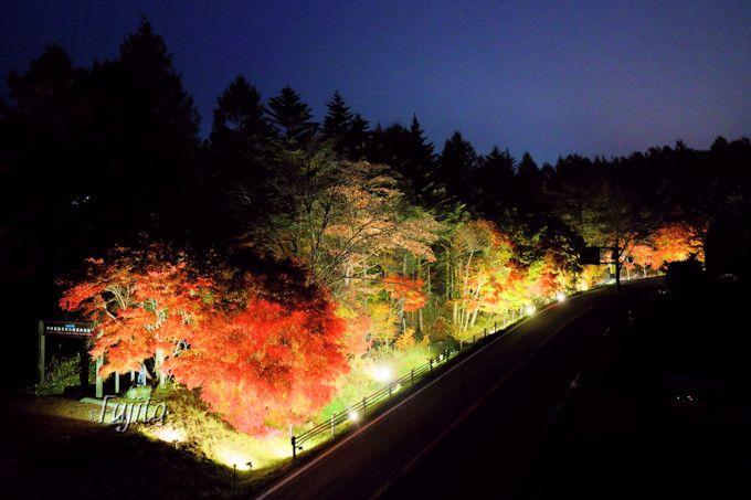 紅葉ライトアップも実施!道の駅「草津運動茶屋公園」