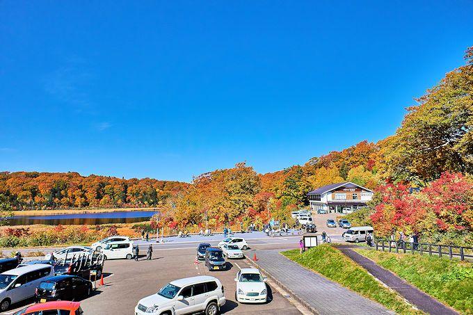大沼の紅葉を八幡平ビジターセンターから一望!