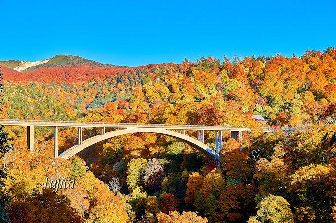 秋田八幡平の紅葉ベスト5!十和田八幡平国立公園の必見紅葉名所