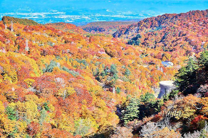 松川渓谷の紅葉第4位!「松川大橋」の上から紅葉狩り
