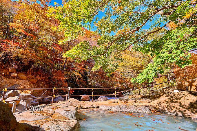 滑川温泉「福島屋」は一面の紅葉に包まれる絶景秘湯!(山形)