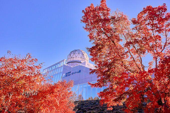 富士山レーダードーム館の紅葉も絶景!